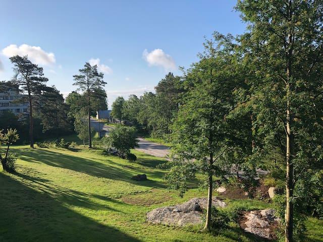 Kristiansand dyrepark, eller palmesus i sommer ??