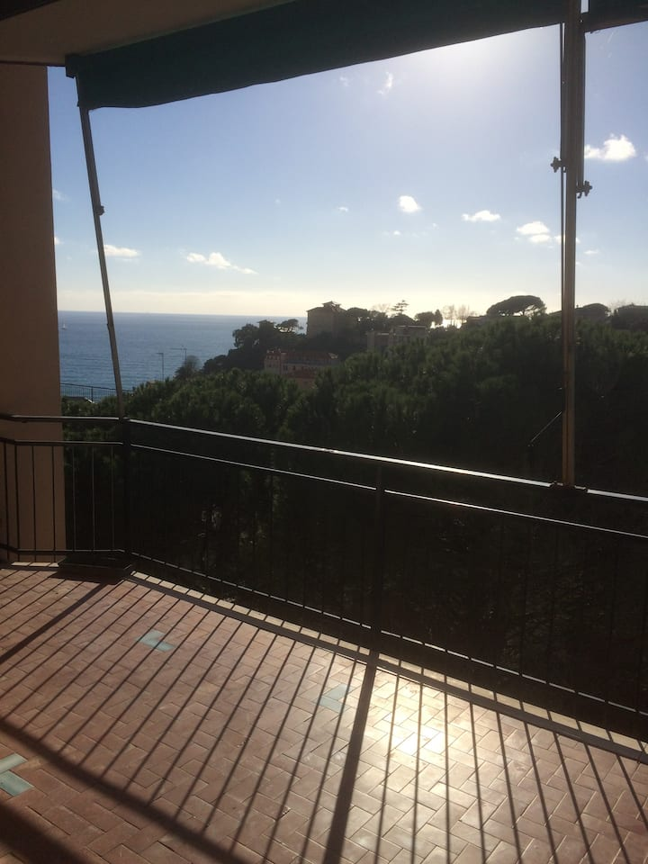 Quite apartment with great sea view