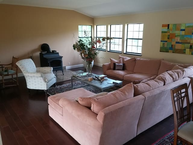 Large Couch perfect for sitting around with friends