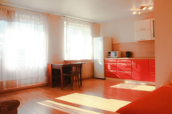 Great apartment in a convenient are - Петрозаводск - อพาร์ทเมนท์