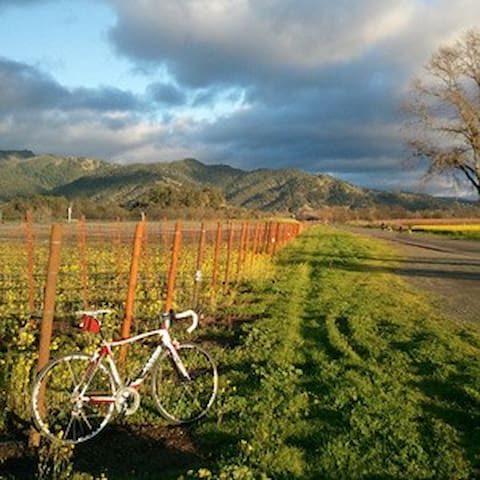 Bike out to some gorgeous views all within 2 miles of our house