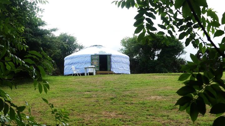 Farm Eco Glamping,  'Hayfield Yurt'
