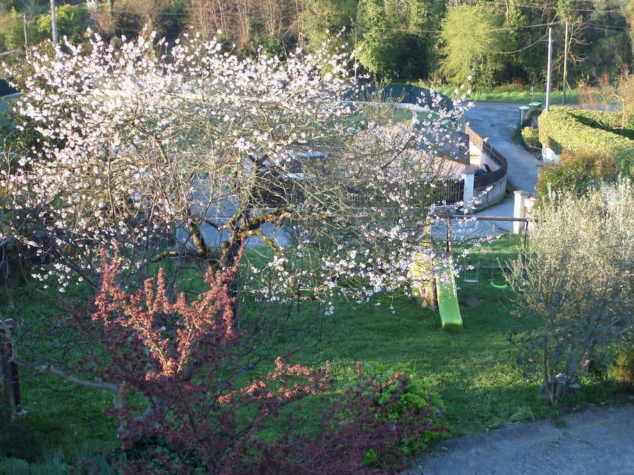Le jardin collectif avec balançoire