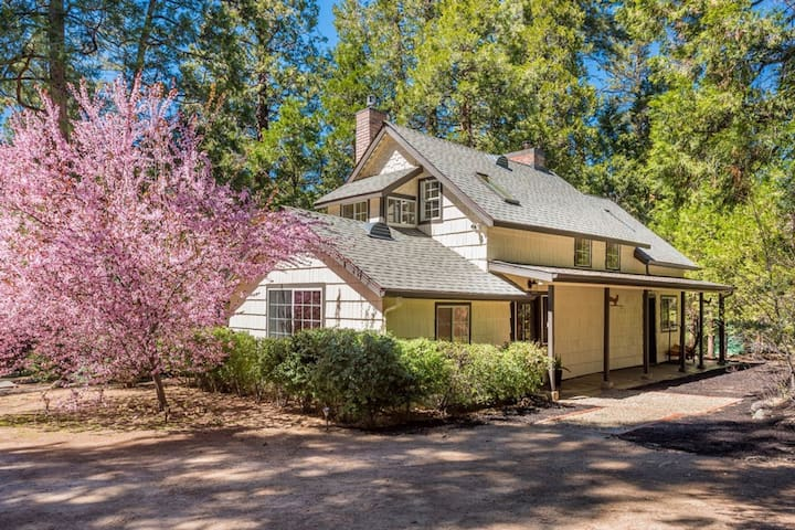 Beautifully updated, two-story home w/ large, furnished deck & forest views