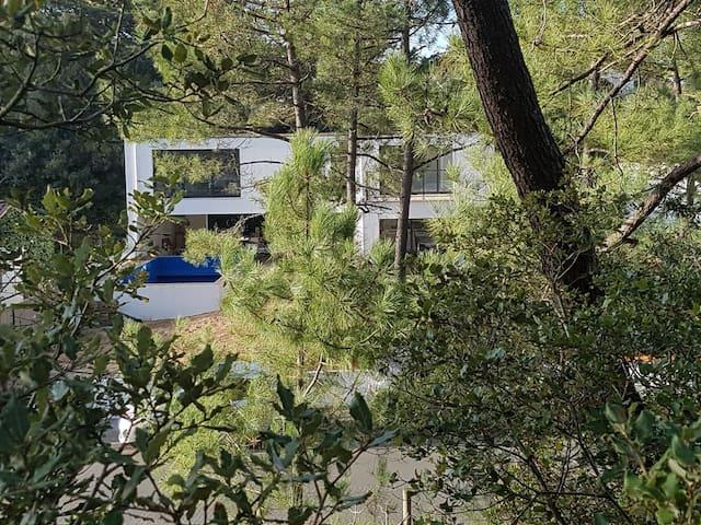 villa avec piscine, 250m de plage, au pied du phar