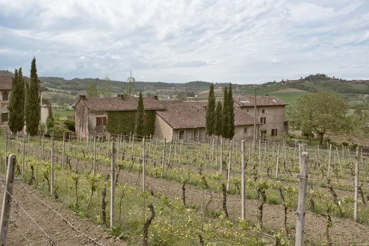 Weingut Cascina Intersenga- Casa delle Vigne