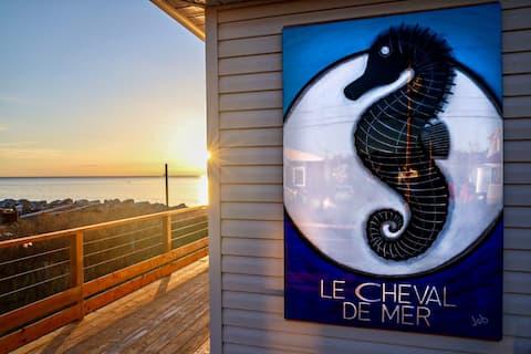 Le Cheval de mer