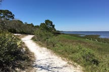 Take a Stroll Through St Joe Peninsula State Park