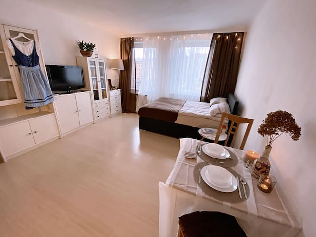 Romantic Apartment with a Danube river view!