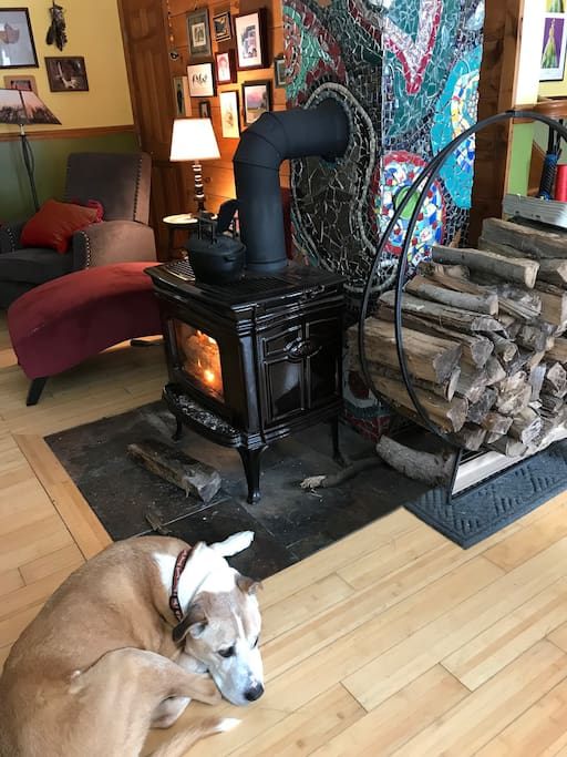 Henry by the fireplace