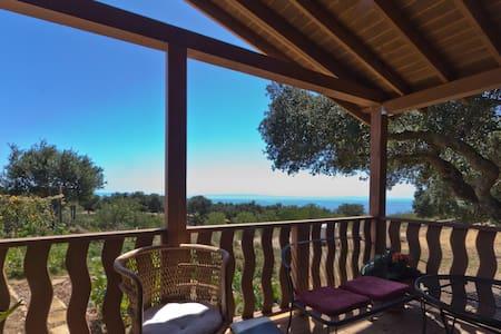 Ocean View Cottage - Santa Barbara