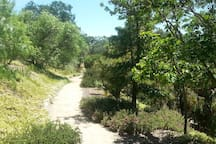 one of many retreat paths