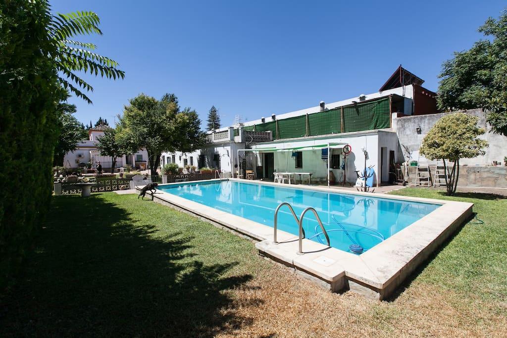 Vtar se 00187 casa independiente con jardin casas en for Alquiler bajo con jardin madrid