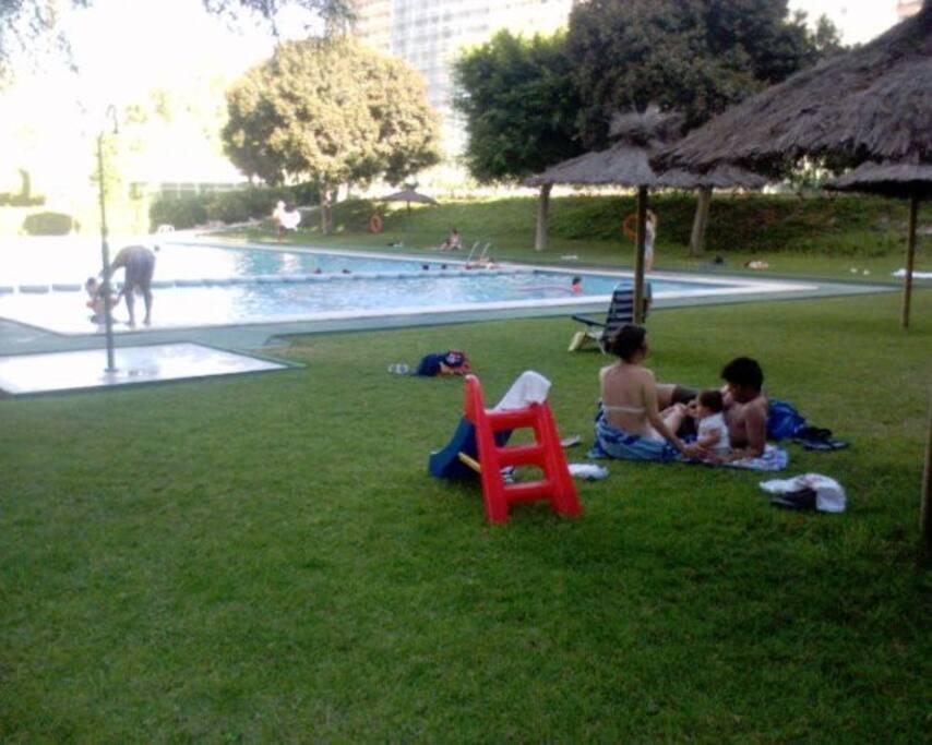 Piscina semi-olimpica / Swimming-pool