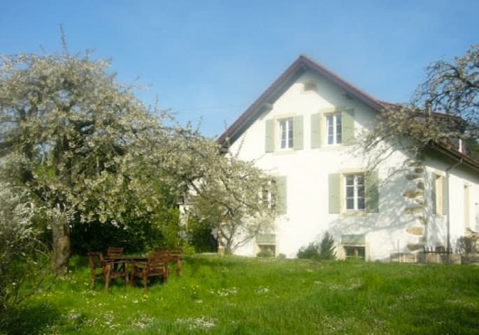 Charming old house with big garden - Milvignes - Casa