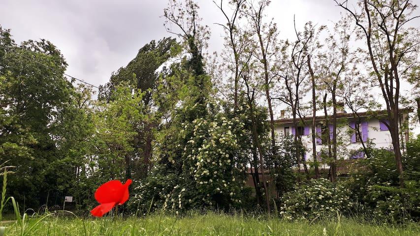 'Stanza privata immersa nel verde'