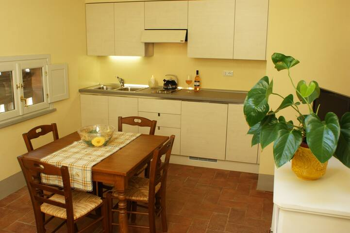 Apartment in the countryside - Pontedera - Appartement