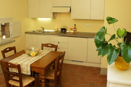 Apartment in the countryside - Pontedera