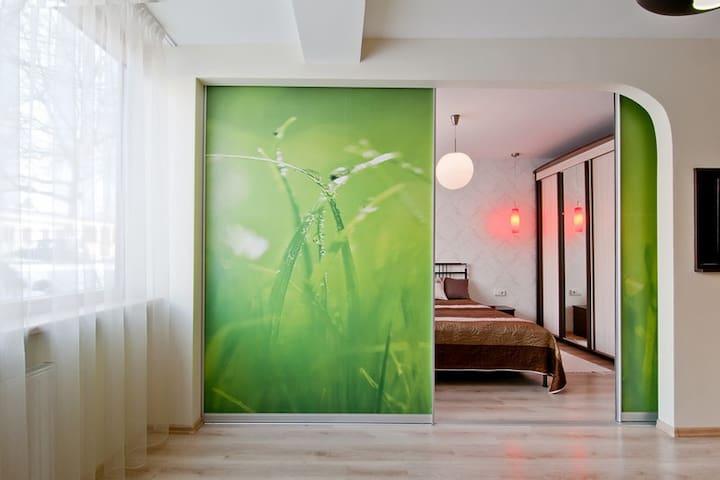 Интимная уютная квартира - Druskininkai - Apartamento