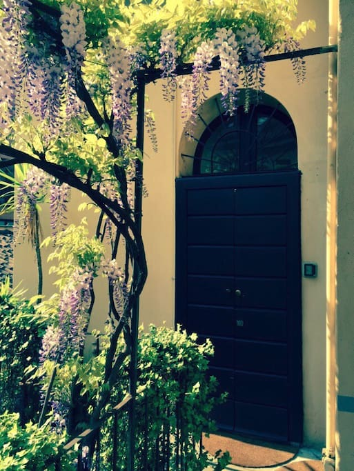 Spring in the courtyard