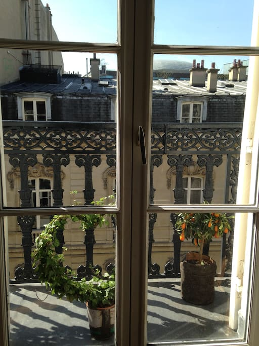 Magnifique appartement avec balcon apartments for rent for Appartement balcon paris