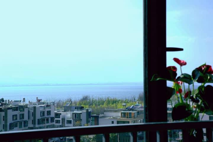乐途海景精品公寓(近洱海公园)一室一卫独立空间