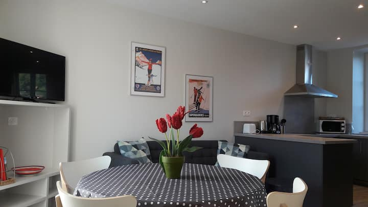 Appartement 2 Duplex T3 centre ville