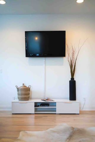 45 inch HD TV - includes all major channels and DVR available.