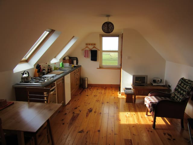 Self contained 1 bedroom flat  - Milltown Malbay - Apartment