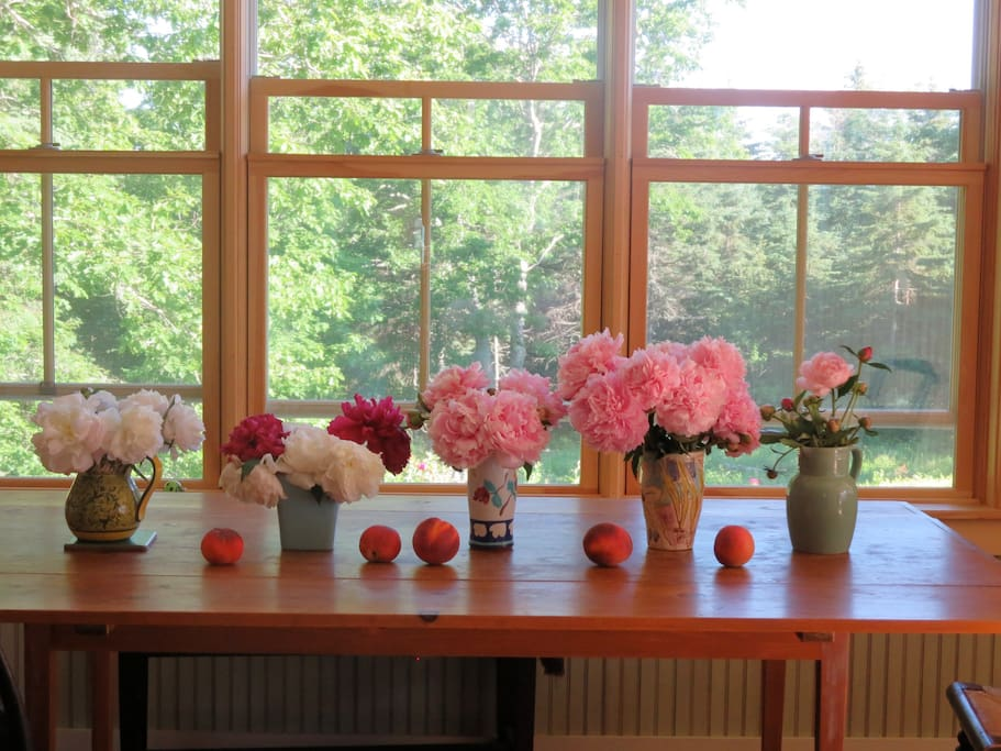 Dining room table, peonies and peaches.