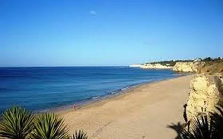 T1 Armação de Pera 50m near beach - Armação de Pêra - Apartment