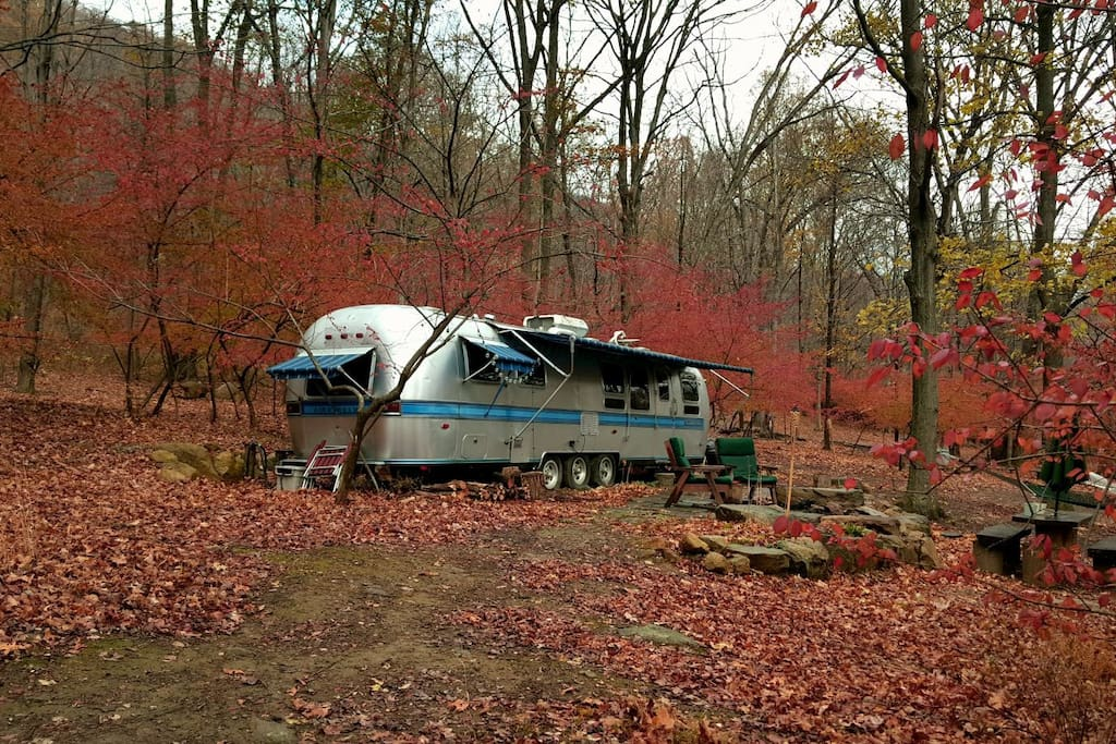 The last colors of Fall at the camp. Burning bush in November