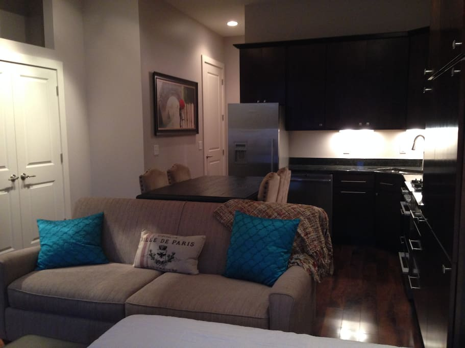 View of the Kitchen, Closet, and Couch