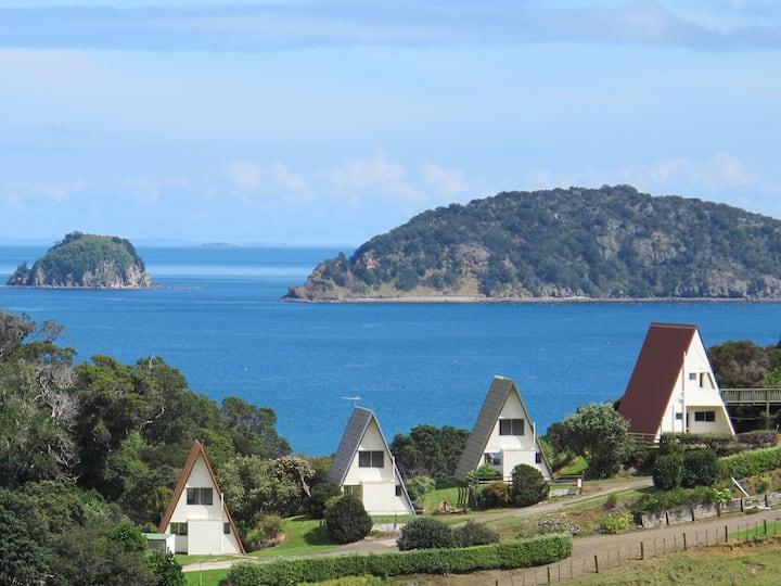 Kikorangi -family chalet, spectacular sea views