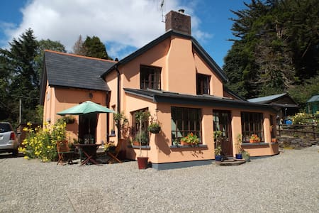 Charming room   Old Schoolhouse B&B - Bantry - Bed & Breakfast