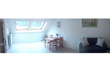 Nice & cheap room in Leuven, quiet, parking avail. - Leuven - Byt