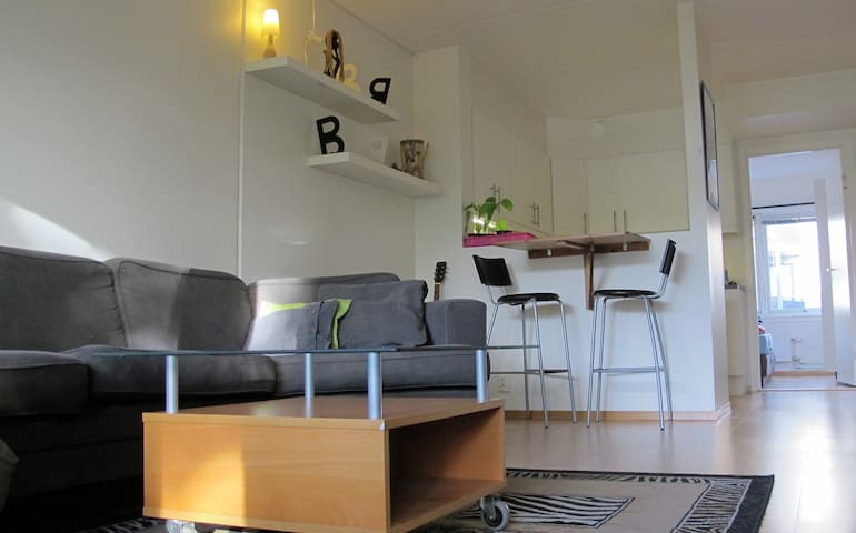 Apartment near Oslo Central station. 10 min walk.