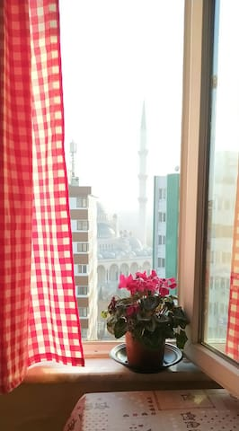 Mehr Homestay   Peaceful rooms for stay