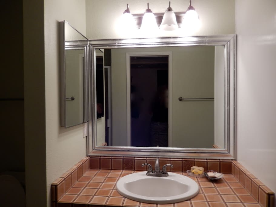Private bath with a door from the Guest Bedroom directly into this bath.