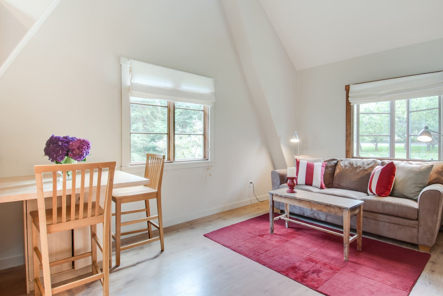 Light and airy Mother-in-law apartment. Vaulted ceilings & gourmet kitchen