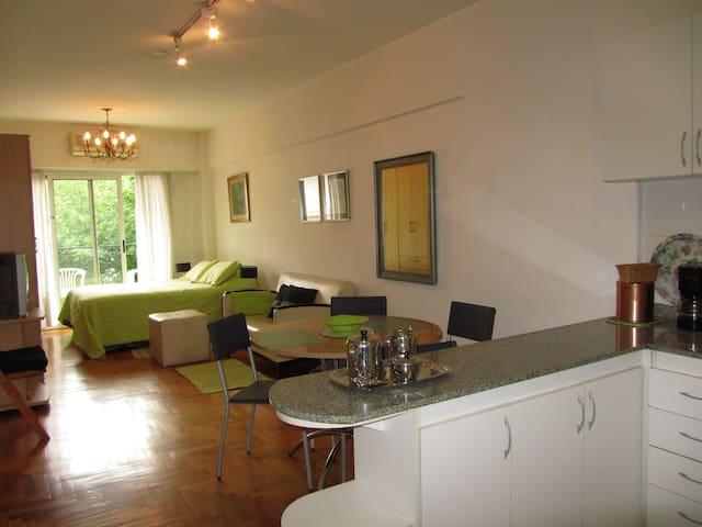 Spacious & Cozy Studio Recoleta French I