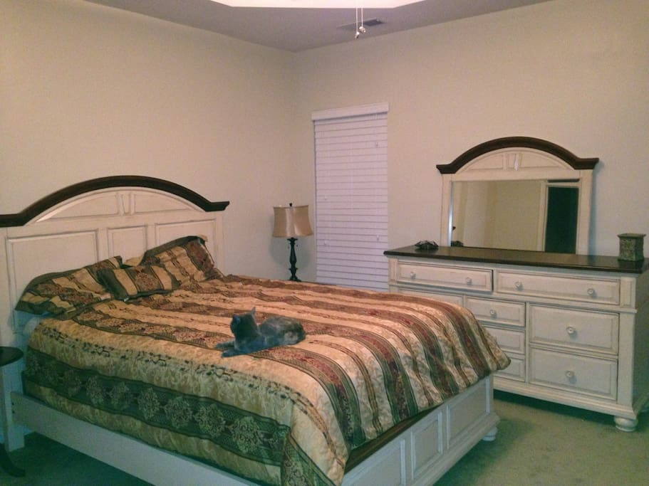 Spacious bedroom on main floor with a private bath and a reading corner.   My precious kitty is optional. :-)