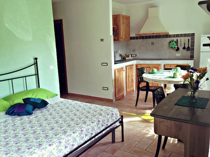 Lovely apartment close to Cinque Terre, Versilia