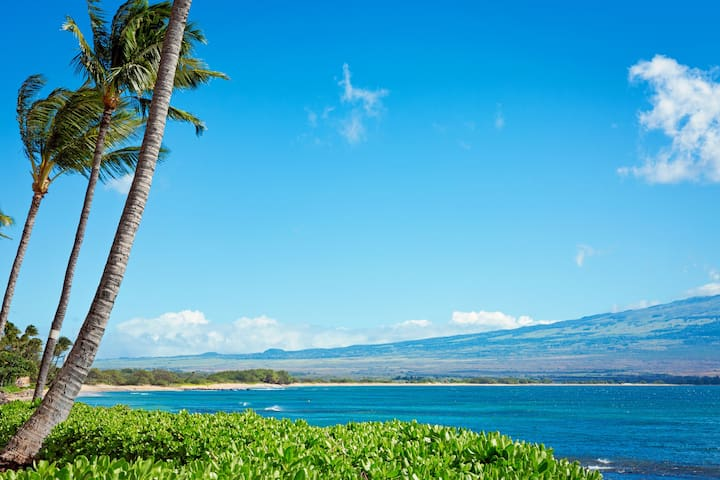 Another photo of the view from the lawn taken just steps from the lanai.