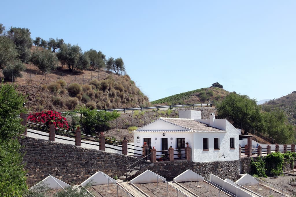 Traditional andalusian House with Stone walls and raisin drying places