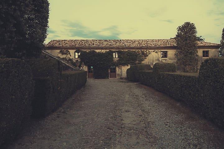 Le Scuderie del Castello - Camera delle Farfalle - Coazzolo