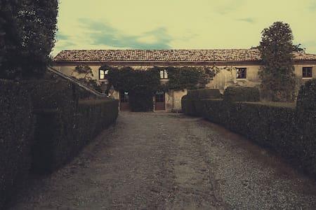Le Scuderie del Castello - Camera delle Farfalle - Coazzolo - Wikt i opierunek