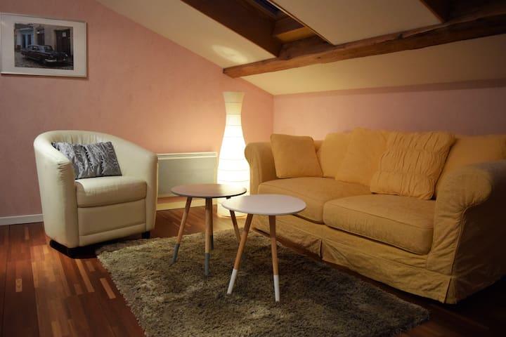 Studio sur les bords du Rhône - Seyssel - Apartment