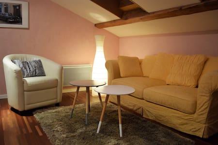 Studio sur les bords du Rhône - Seyssel