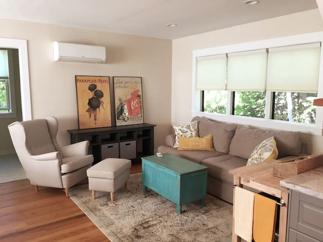 Living room with queen pull out sofa bed